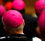 Obispos Diocesanos
